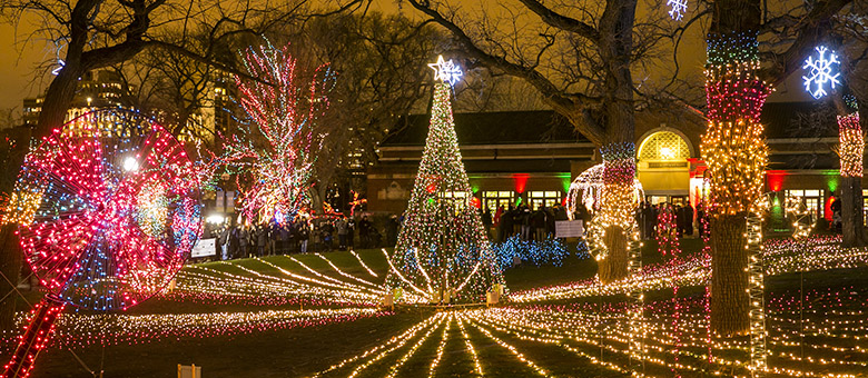 Lincoln Park Christmas Lights